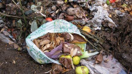 Landia says food waste problem is hard to swallow