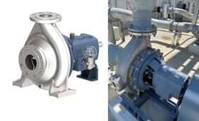The Model GSO pump that was delivered (left) and the pump installed in the plant (right).
