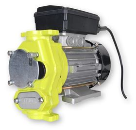 The TecPump 600 conveys diesel, gas oil and radiator antifreeze concentrate.