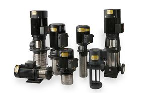 The RAE pump family covers several stock horizontal and vertical pumps that have been rebranded.