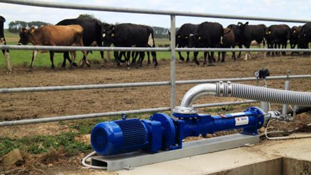 NOV Mono pump keeps irrigation water flowing